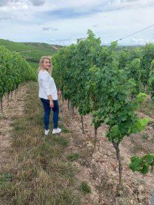 nahe wijngaard