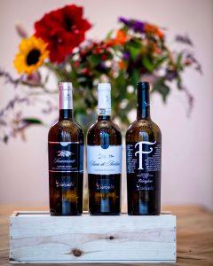 white wines campania